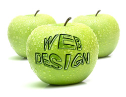 Website design affordable prices
