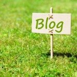 Should New Bloggers Create their Website on WordPress?